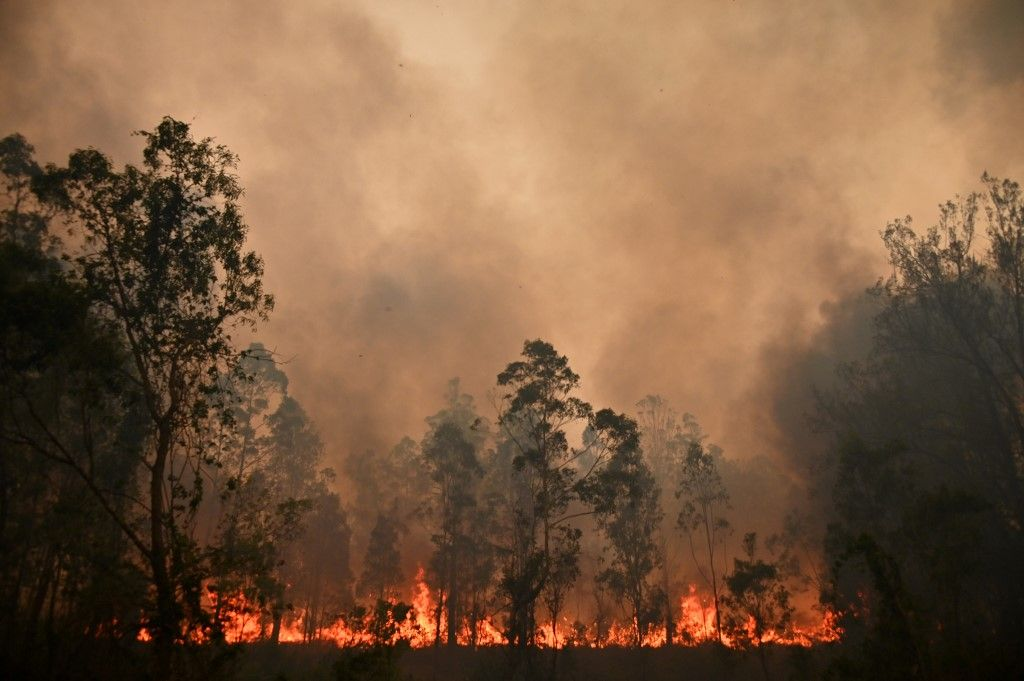 A fire rages in Bobin, 350km north of Sydney on November 9, 2019, as firefighters try to contain dozens of out-of-control blazes that are raging in the state of New South Wales. - Catastrophic bushfires in eastern Australia have killed at least three people and forced thousands from their homes, with the death toll expected to rise as firefighters struggle towards hard-to-reach communities. (Photo by PETER PARKS / AFP)