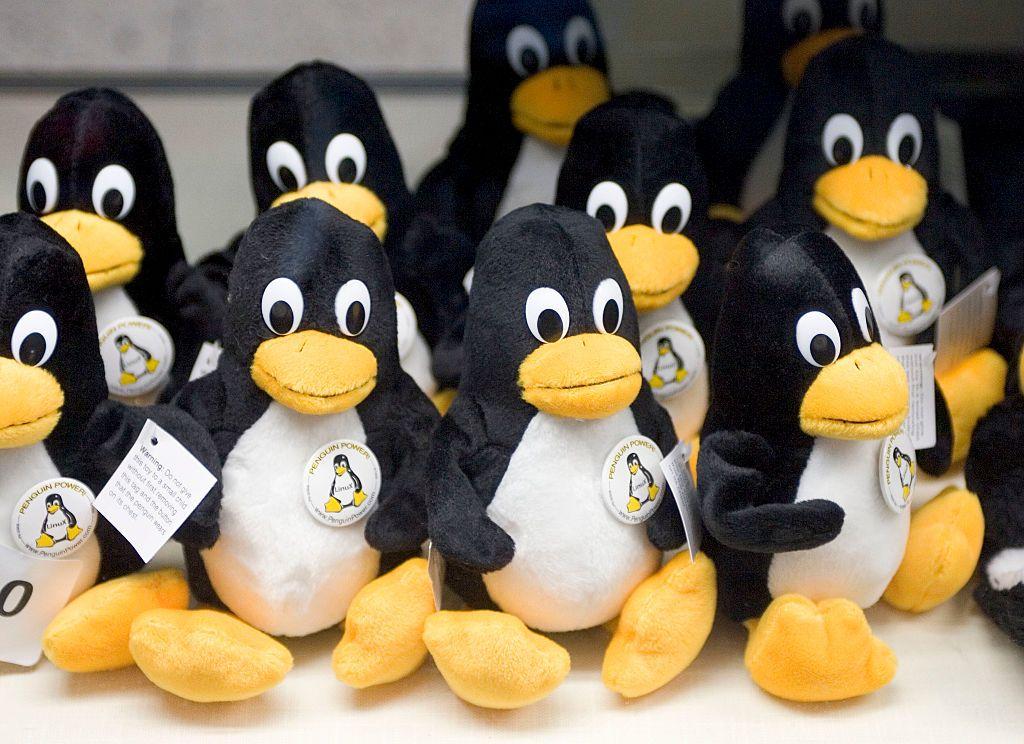 """نظام التشغيل """"لينوكس"""" ينافس """"ويندوز"""".. سهل ومجاني"""