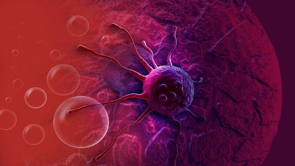هل يمكن لجهاز المناعة في جسم الإنسان علاج مرض السرطان؟