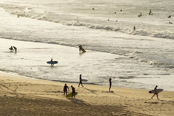 People surf as Bondi Beach reopens to surfers and swimme...</p>                     </div>                     <div class=