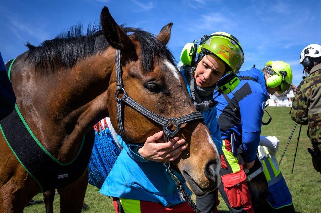 الجيش السويسري يختبر طريقة لإجلاء الخيول خلال الأزمات