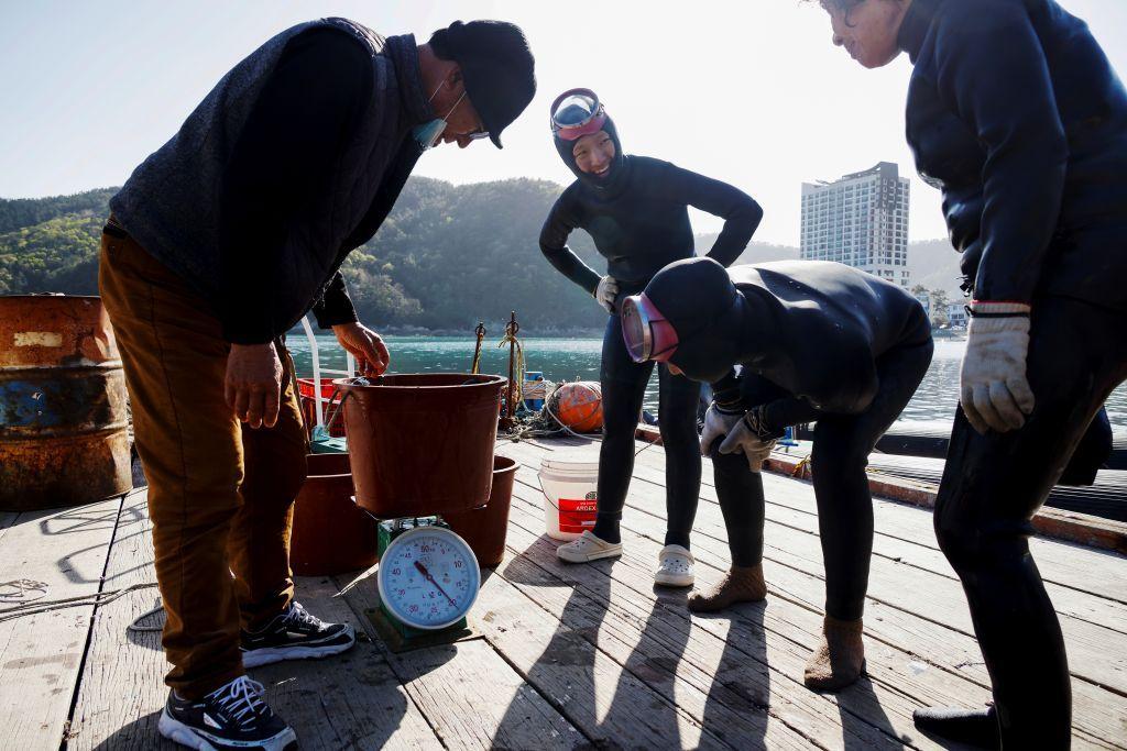 هايينيو أو نساء البحر .. النساء الغواصات في كوريا الجنوبية بين مطرقة المناخ وسندان الكساد الإقتصادي