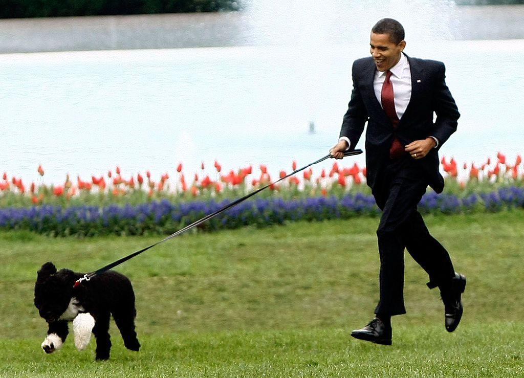"""بكلمات مؤثرة.. عائلة أوباما تودّع كلبها """"بو"""""""