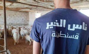 ناس الخير قسنطينة قدمت 53 من الأضاحي ل 100 عائلة