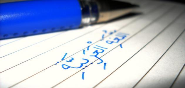 14 معلومة قد لا تعرفها عن اللغة العربية!